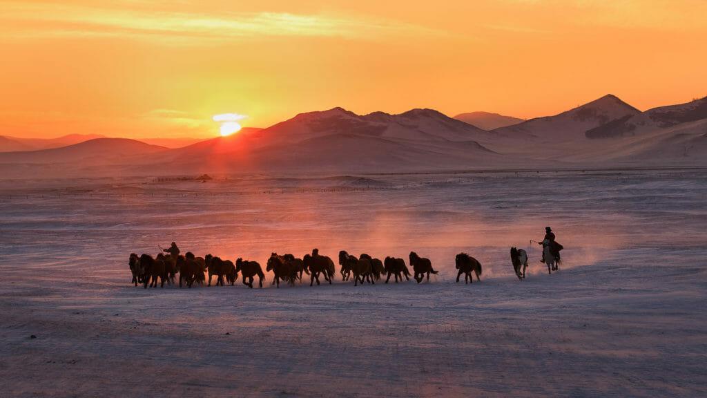 Horses running on snow field in Inner Mongolia