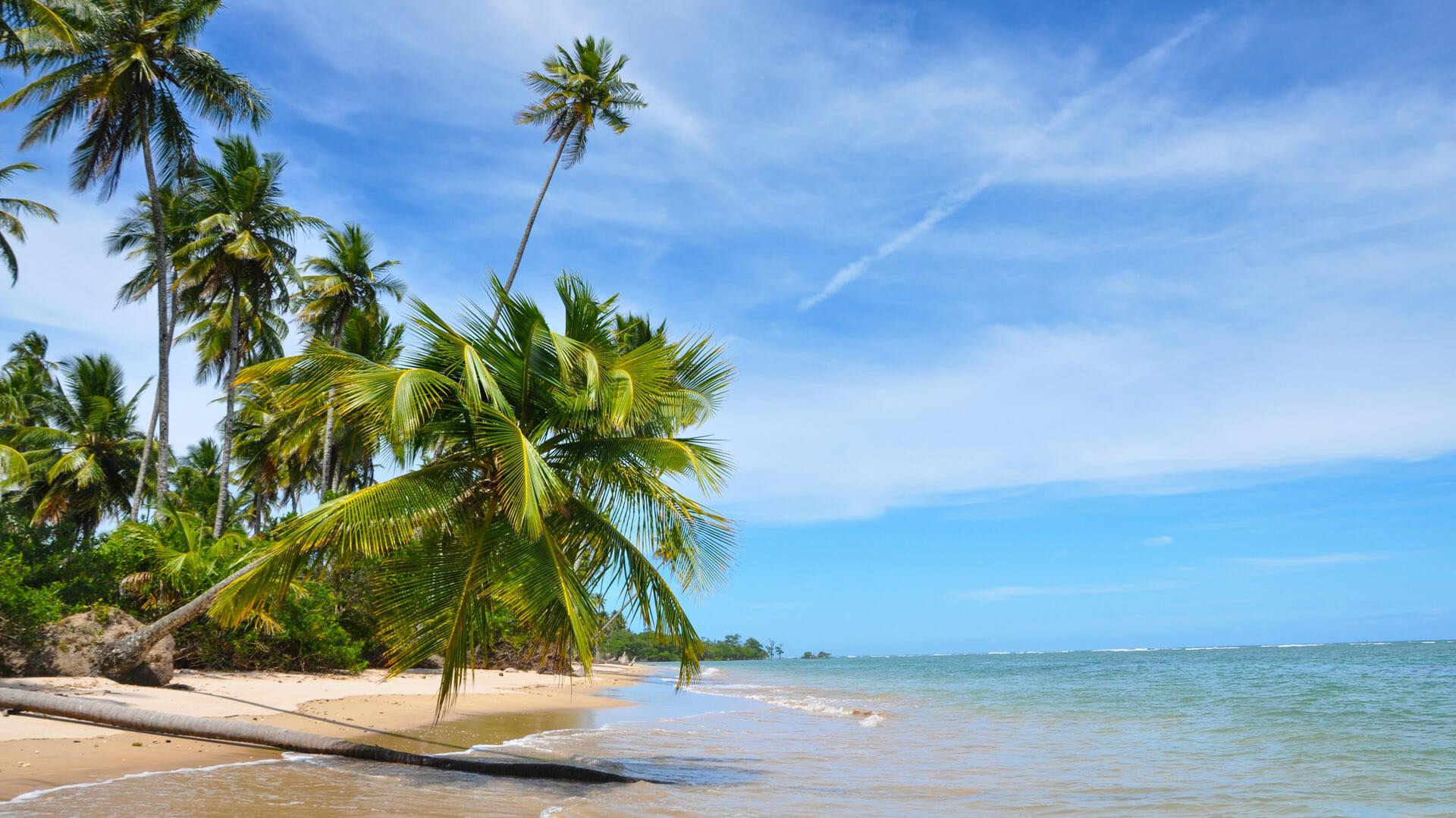 Bahia Beaches Brazil Holidays Steppes Travel
