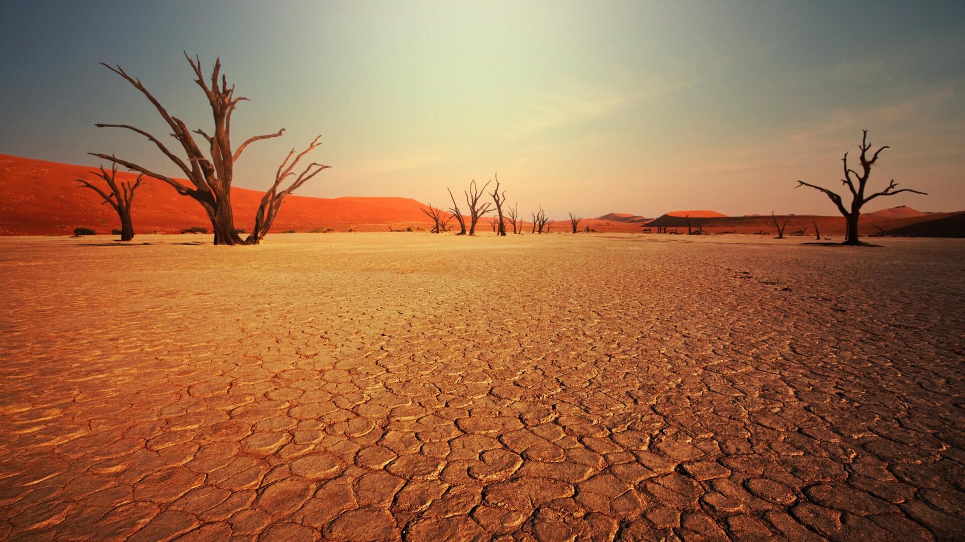 Sossusvlei - Namibia holidays - Steppes Travel