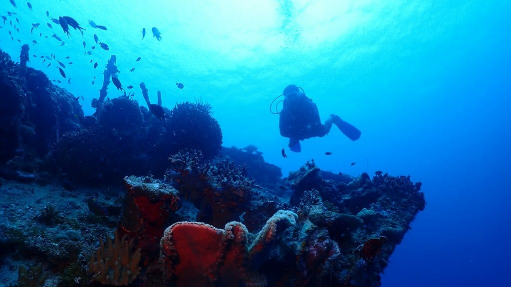 Underwater shot, bright blue water with diver swimming above wreck.
