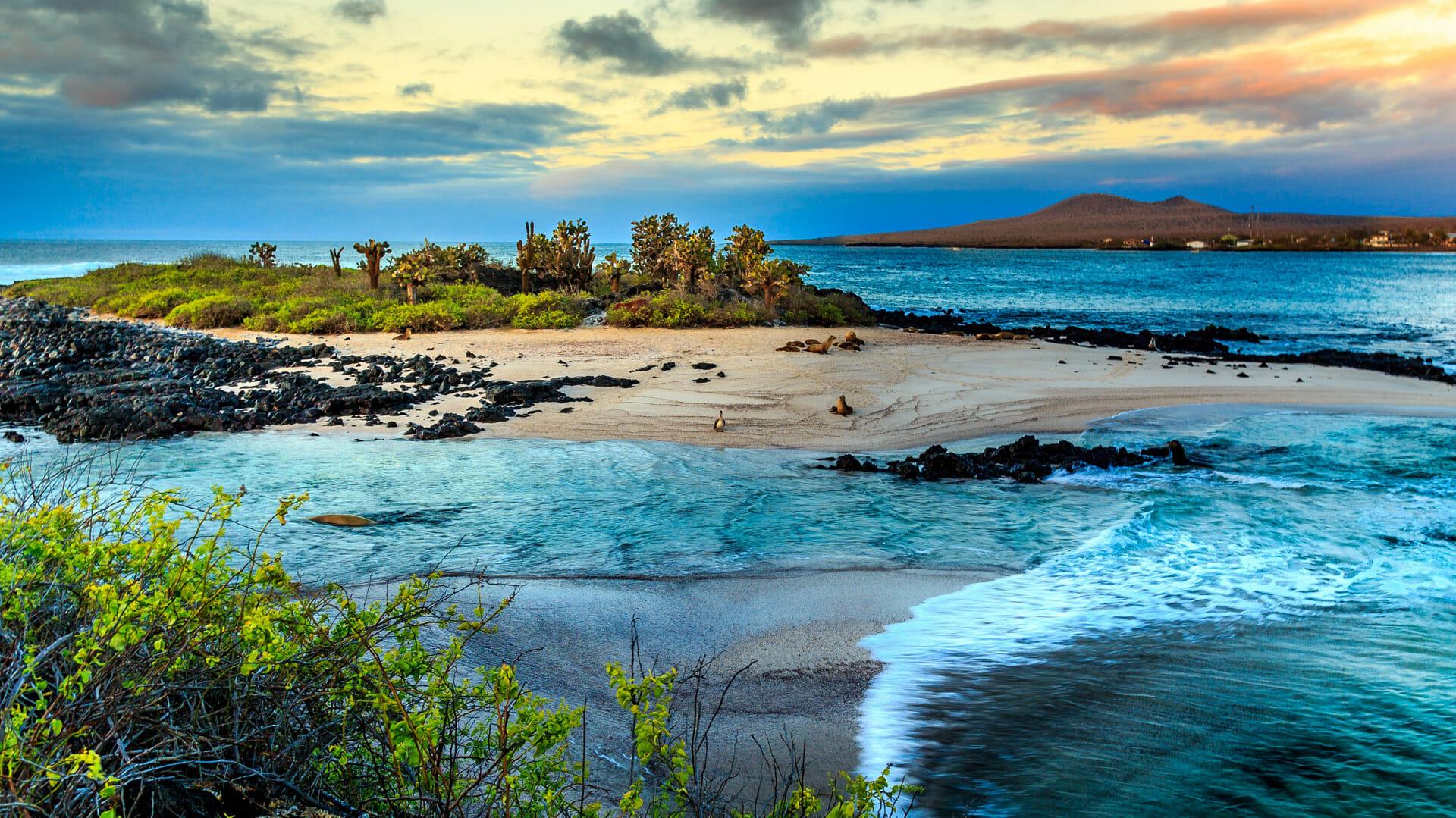 Galapagos Islands Holidays Cruises Steppes Travel