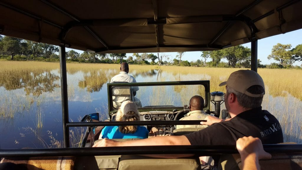 Game drive over floodplains, Okavango Delta, Botswana