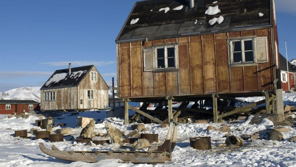 Huskies, Ittoqqortoormiit, Greenland