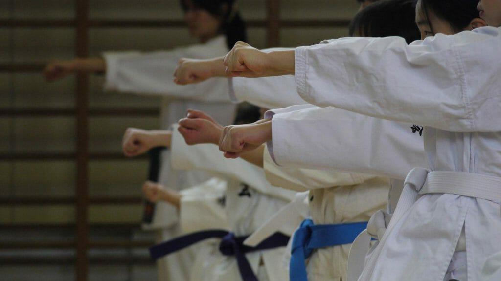 Karate Lesson, Japan