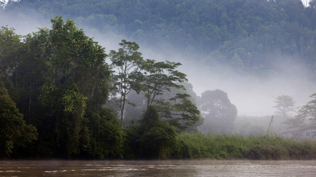 Kinabatangan River, Malaysia