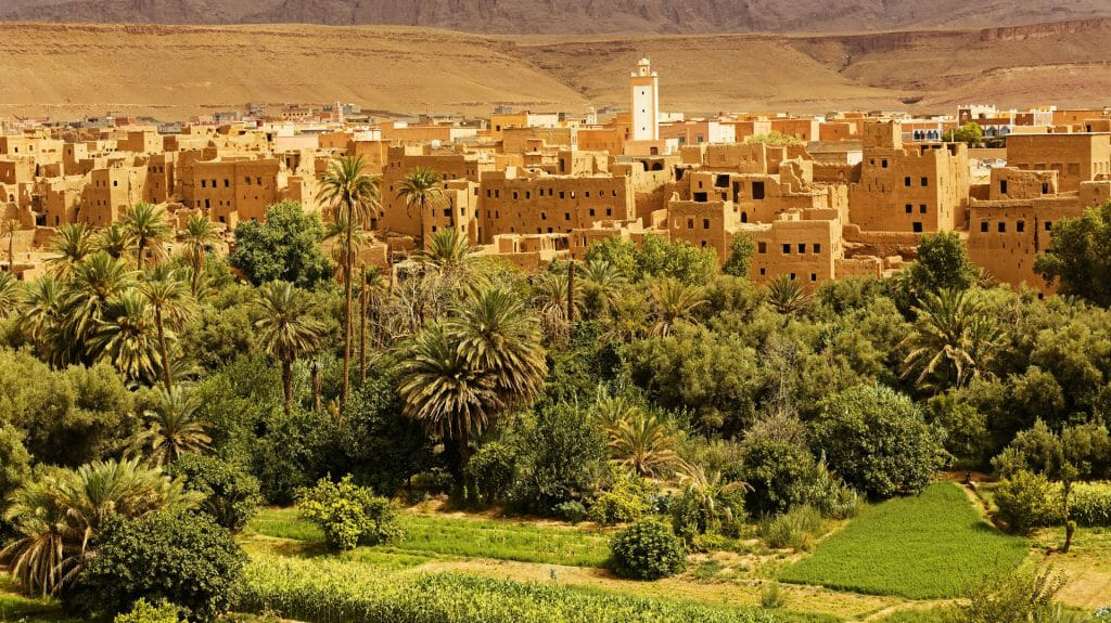 old city surrounded by the palm and date trees in Ouarzazate ,Morocco
