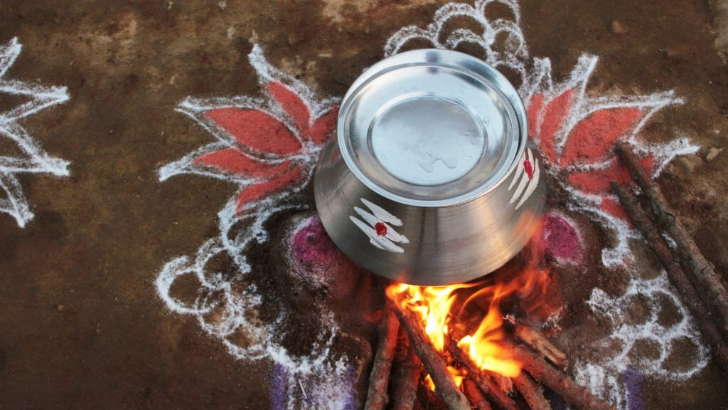 Pongal Festival, Kerala, Iindia