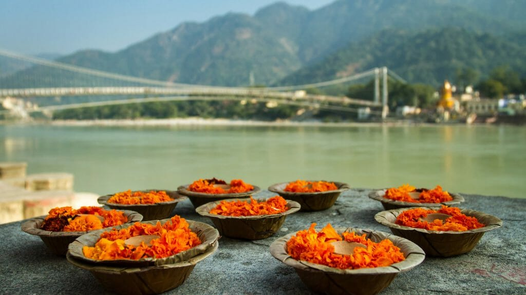 Puja Flowers, Ganges River, Rishikesh, India