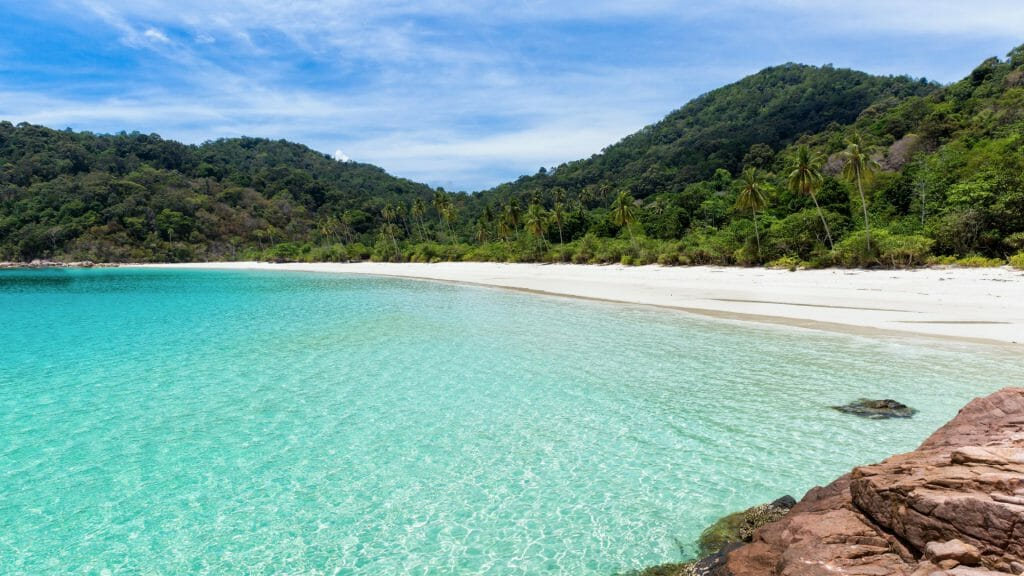 Turquoise clear water leading to white beach backed by tropical rainforest.