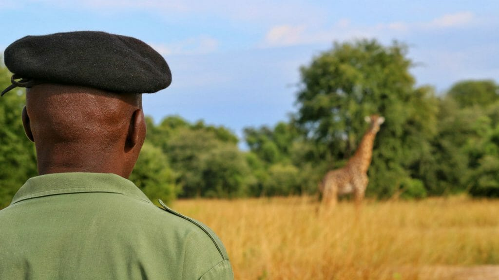 Walking safari, South Luangwa, Zambia