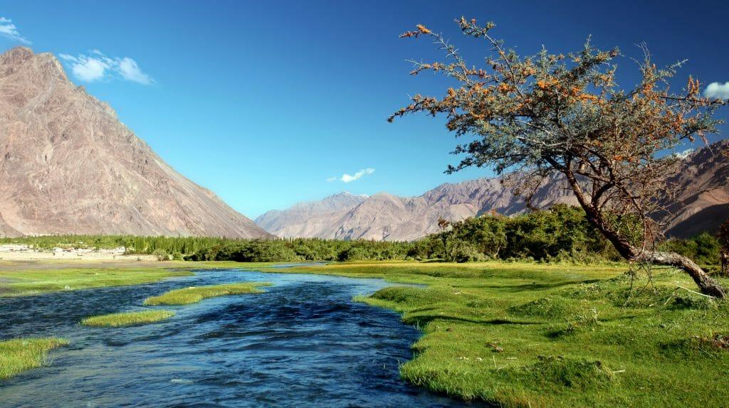 River, Nubra Valley, Ladakh