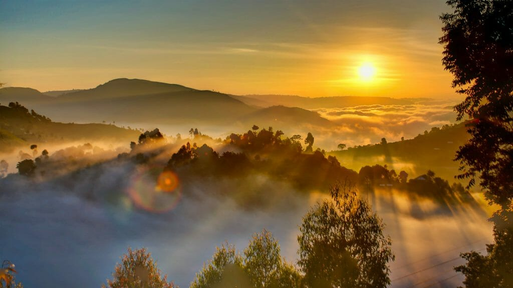 Sunrise, Bwindi Impenetrable Forest, Uganda