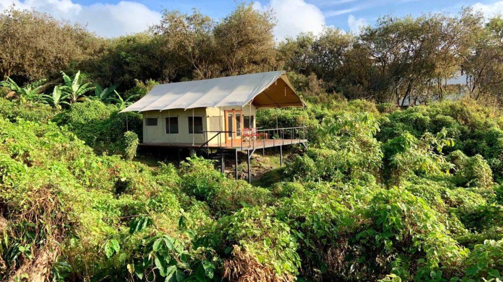Scalesia Lodge, Isabela Island, Galapagos Islands