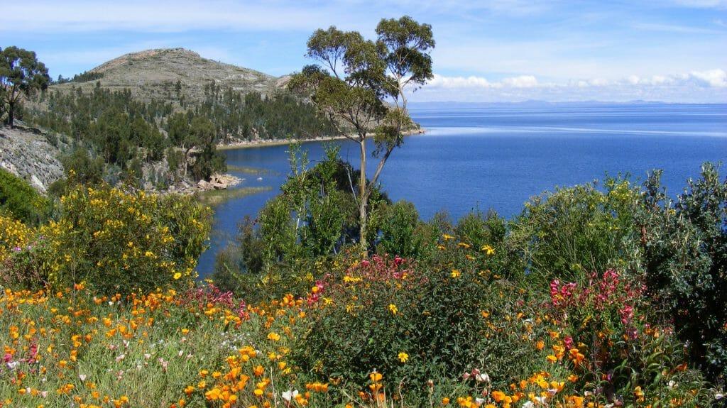 Lake Titicaca, Suasi Island, Peru