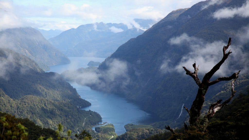 Wilderness of Fiordland National Park, South island, New Zealand