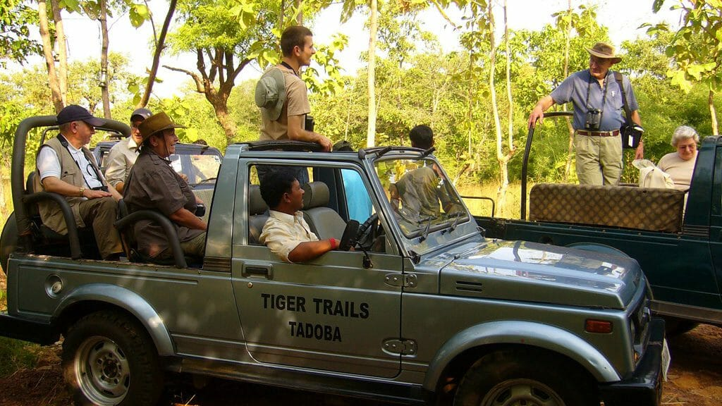 Game Safari, Tiger Trails, Tadoba National Park, India