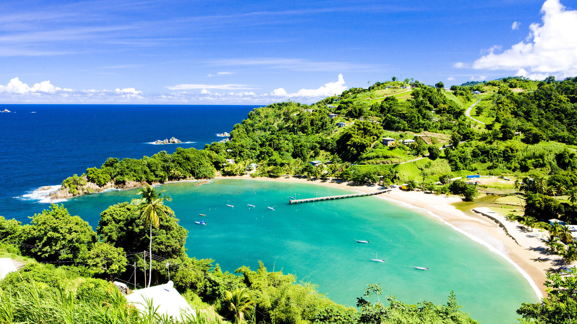 Highlights of Trinidad & Tobago Tailor made by Steppes Travel