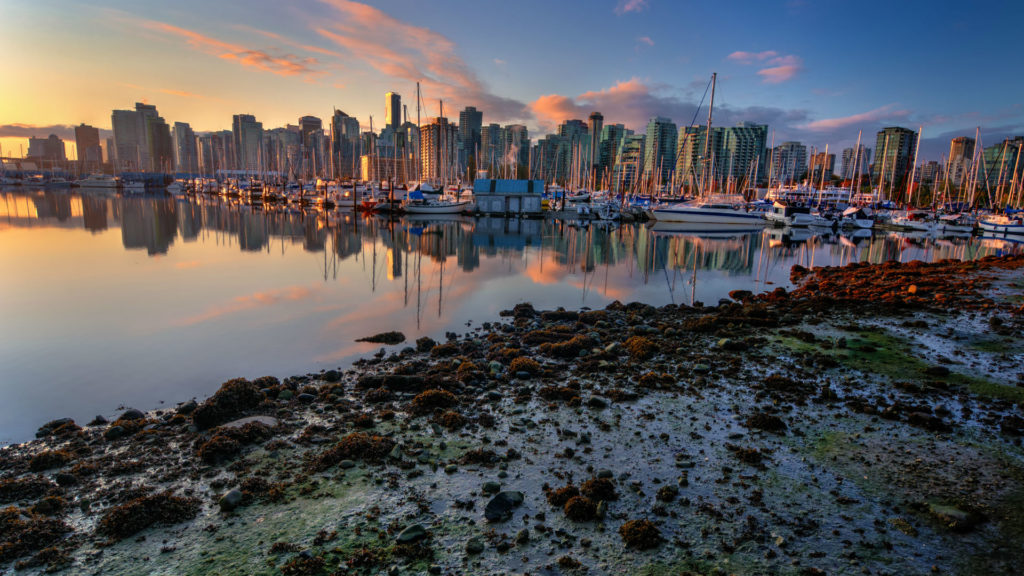 Halifax, Moored Yachts, Sunset, Maritimes