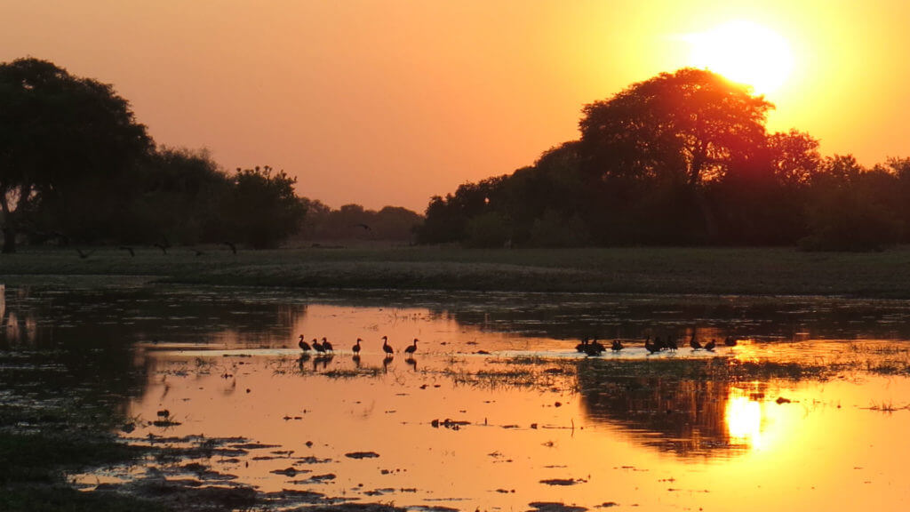 Sunset, Africa Parks, Chad, Illona FAM, 2016