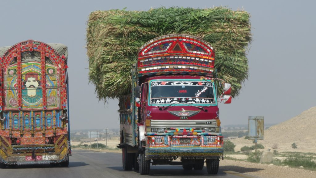Decorated Truck With Grass, Sindh, Pakistan