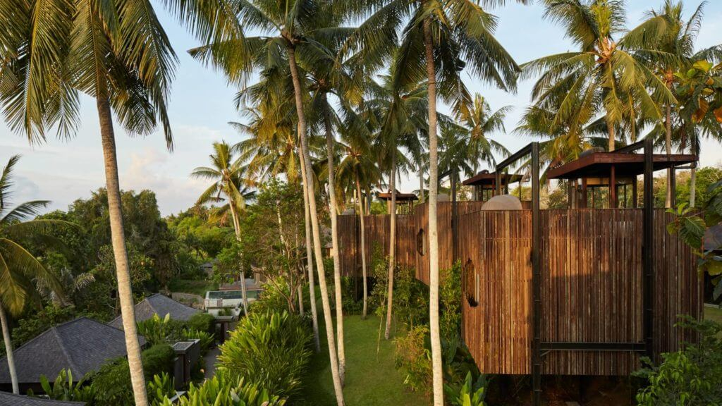 Side view of cube shaped wooden treehouses surrounded by palm trees at Nirjhara.