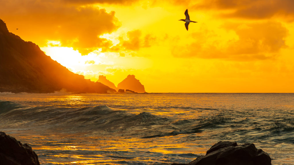 Fernando de noronha island sunset