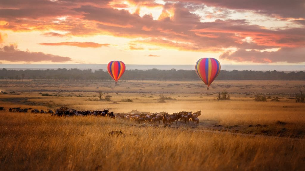 Balloon flight over the plains, Masai Mara, Kenya