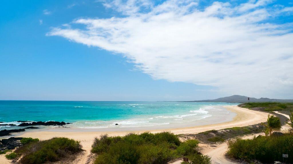 Beach, Scalesia Lodge, Isabela Island, Galapagos Islands