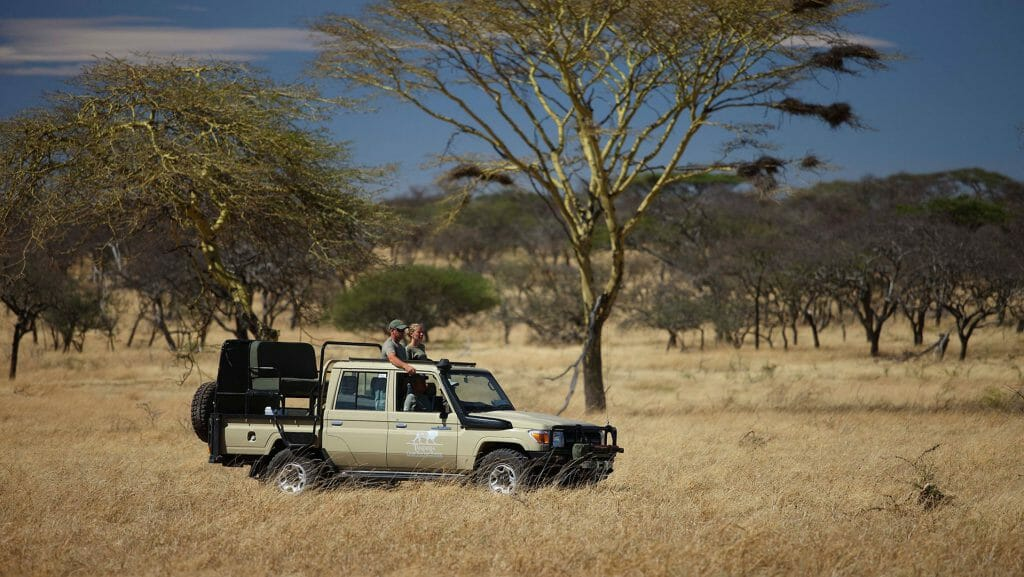 Game Drives, Mwiba Lodge, Serengeti National Park, Tanzania