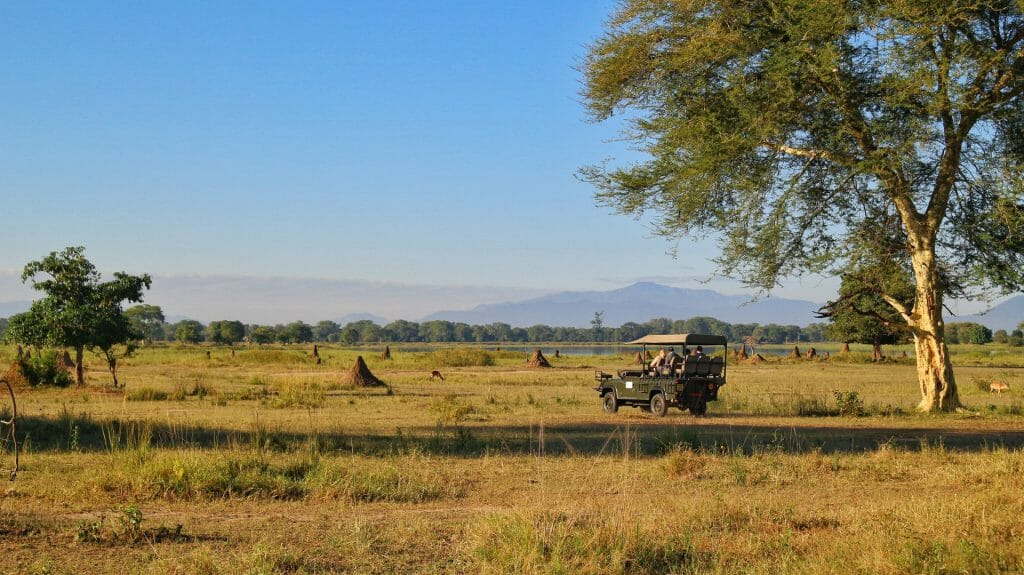 Game vehicle on a drive, Liwonde National Park, Malawi