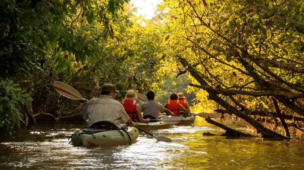 Kayaking, Anakonda, Amazon Ecuador