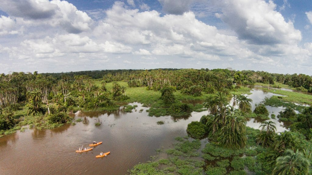 Kayaking from the air, Odzala National Park, Republic of Congo