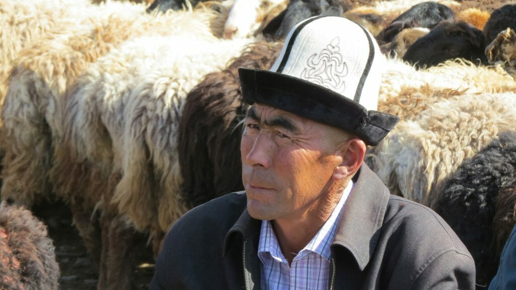 Kyrgyz man at Kashgar Sunday animal market, Kashgar, Xinjiang Province, China