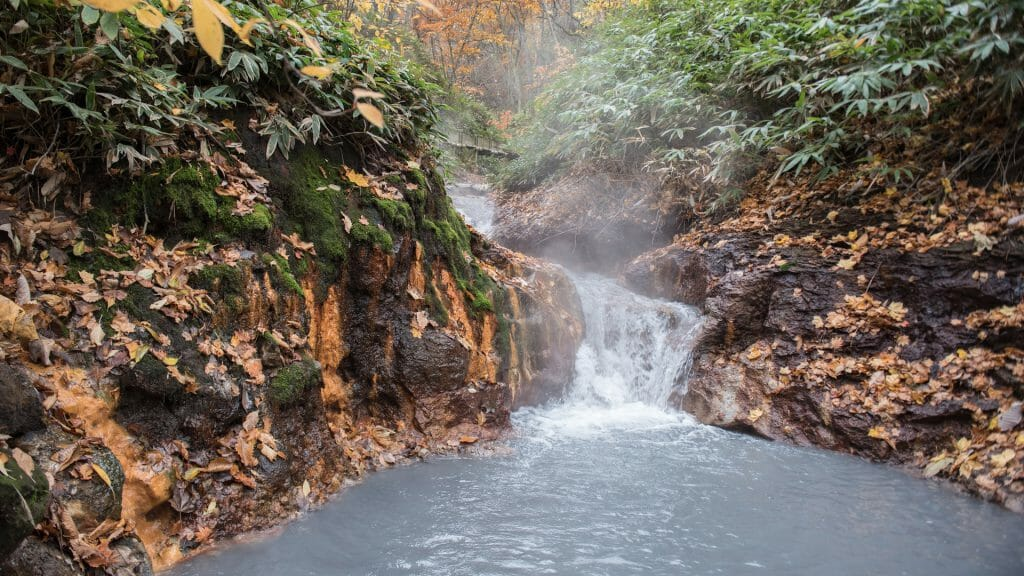 Steaming waterfall cascading into a natural hot spring surrounded by woodland.