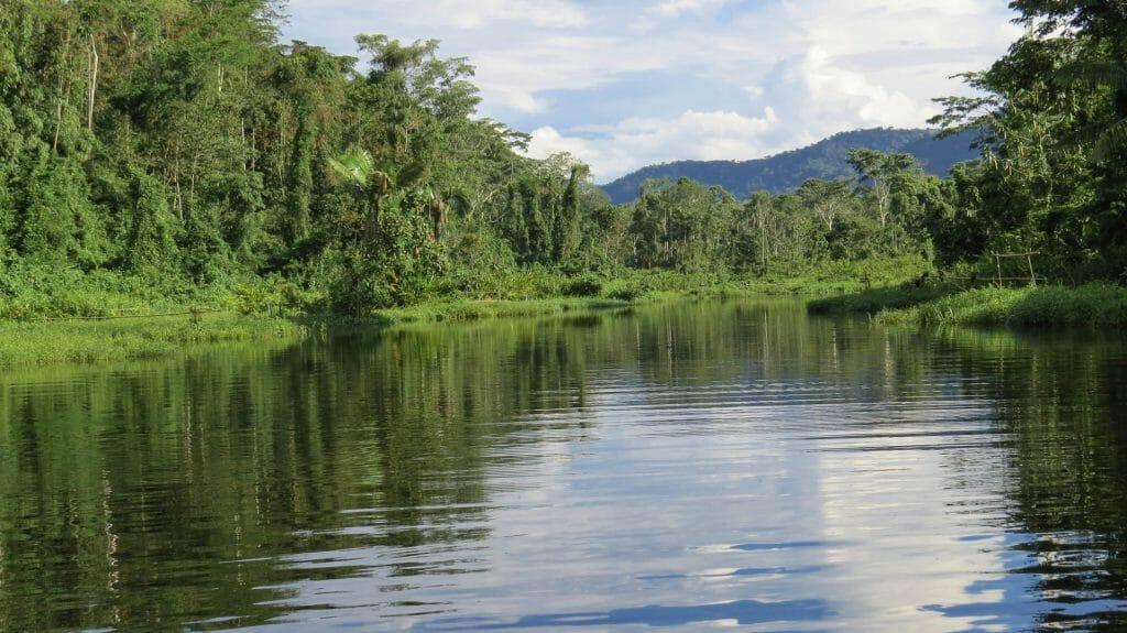 Oxbow Lake, Manu, Amazon, Peru