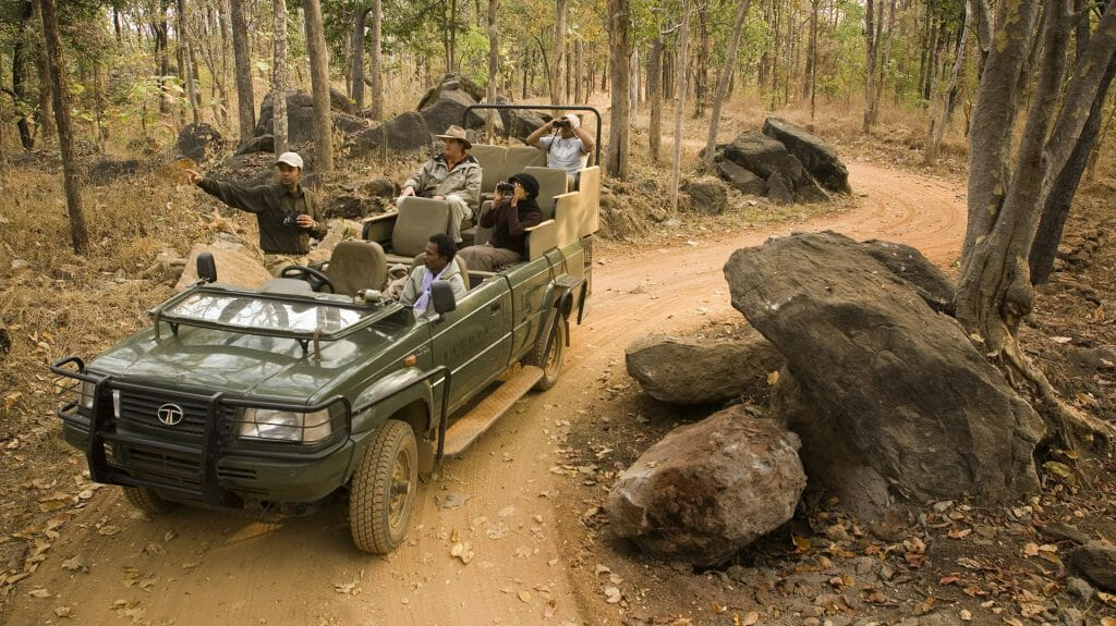 Safari Game Drive, Baghvan, Pench National Park, India