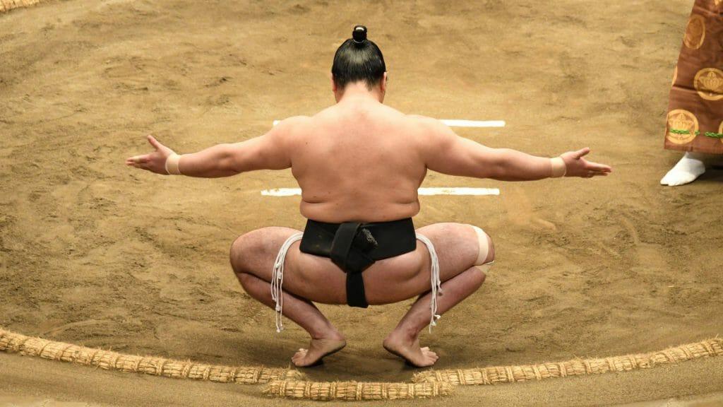 Sumo wrestling, Tokyo, Japan