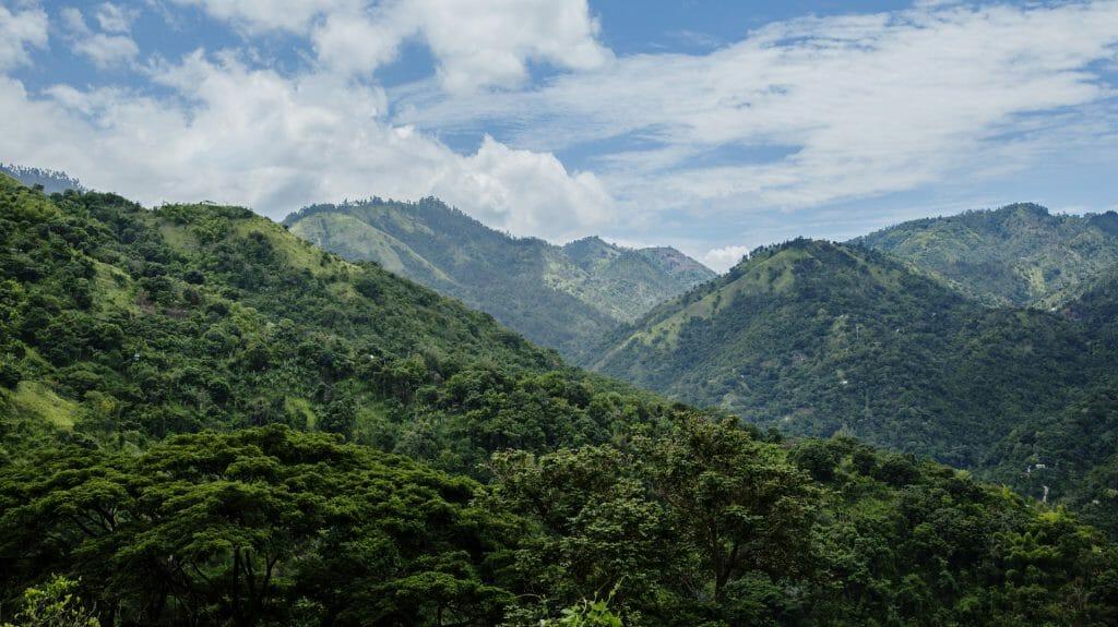 Blue Mountains, Strawberry Hill, Jamaica