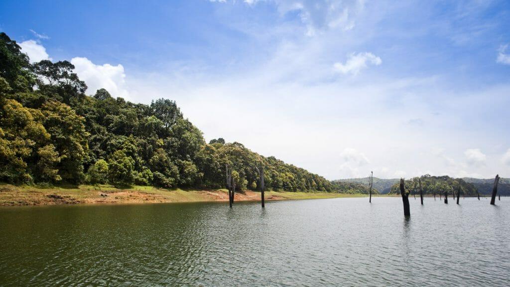 Thekkady Lake, India