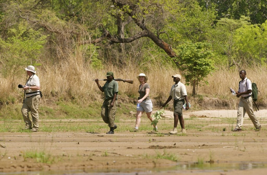 Walking Safari, Bushcamp Company, South Luangwa, Zambia
