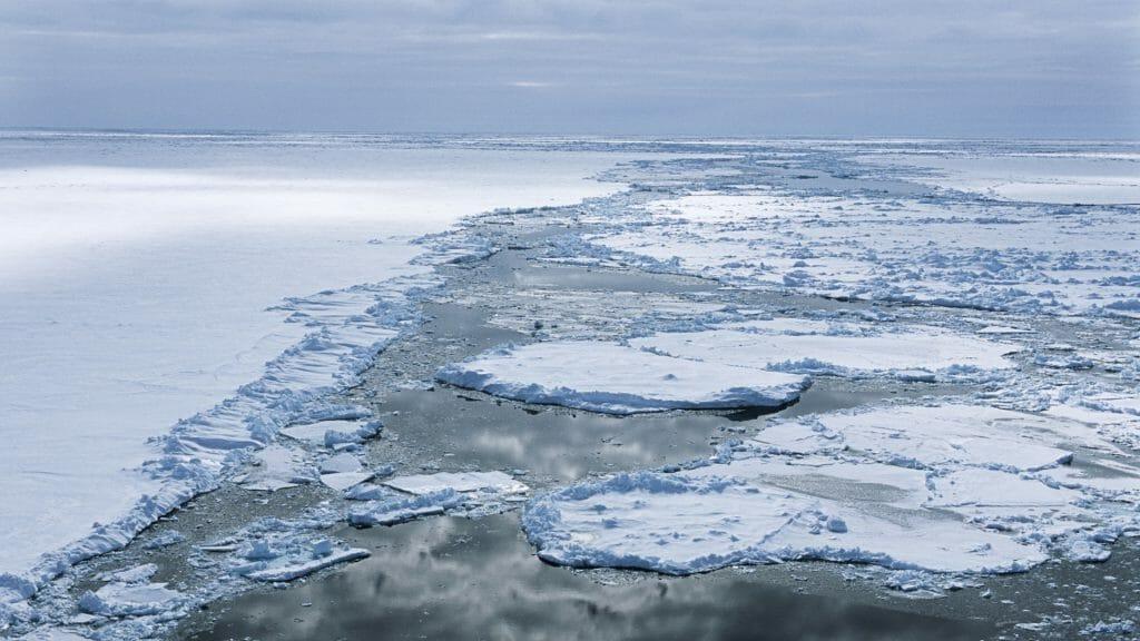 Sea ice, Weddell Sea, Antarctica