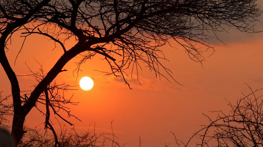 African sunset, Madikwe Game Reserve, South Africa