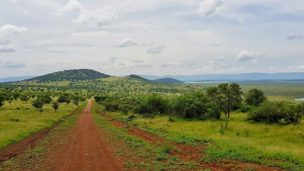The Park, Akagera, Rwanda