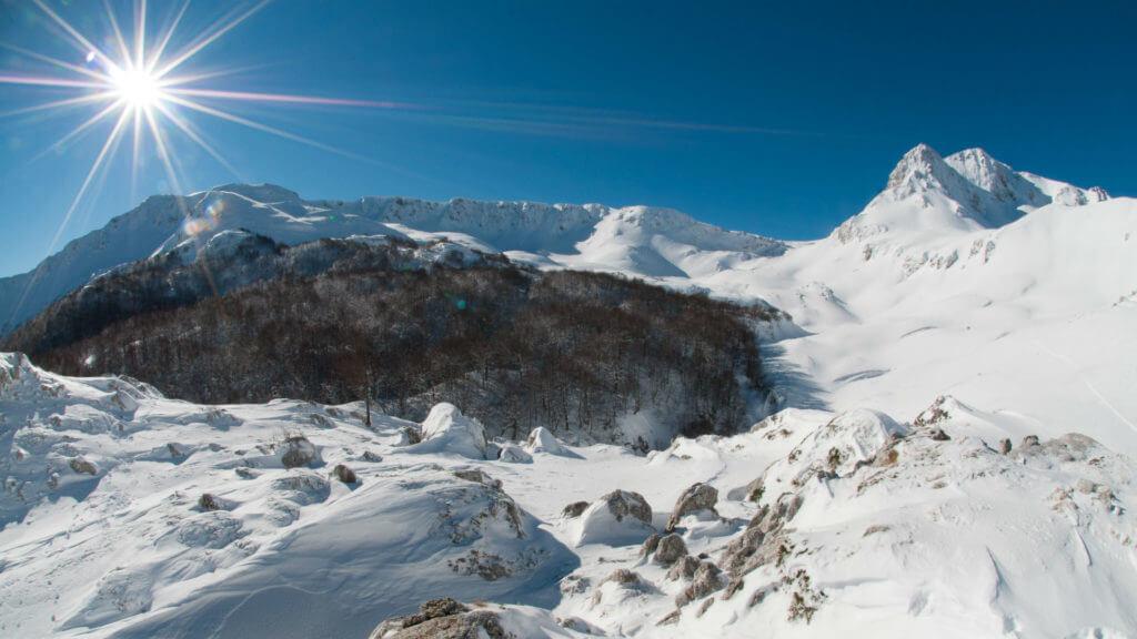 Snow and Sun, Italy, © Umberto Esposito - Wildlife Adventures