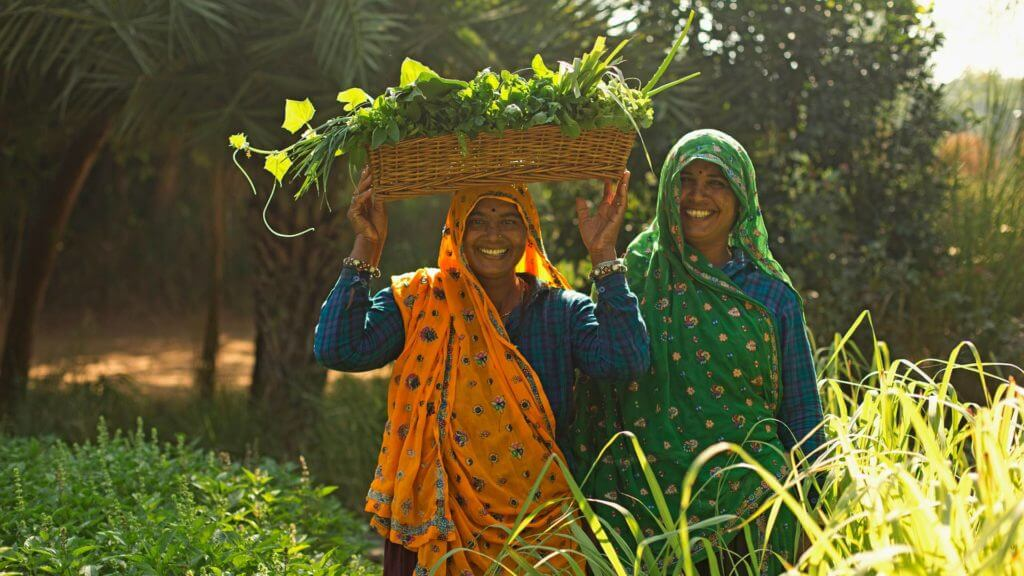Two smiling women in orange and green sari carrying freshly picked herbs in basket on head.