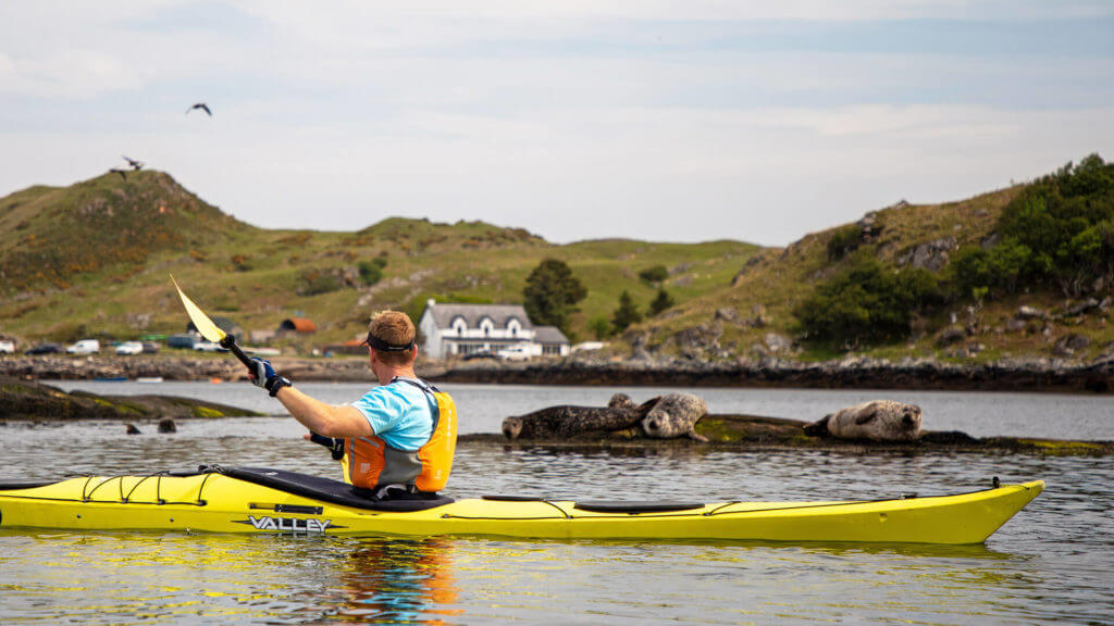 Kayaking with seals in background, Culkein, Drumbeg